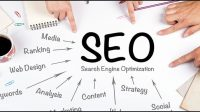 SEO: The Types and Working Principles